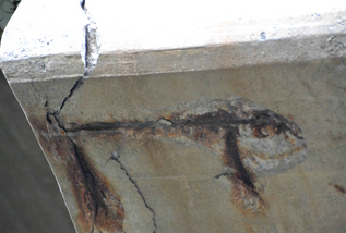 The Science Behind Concrete Corrosion
