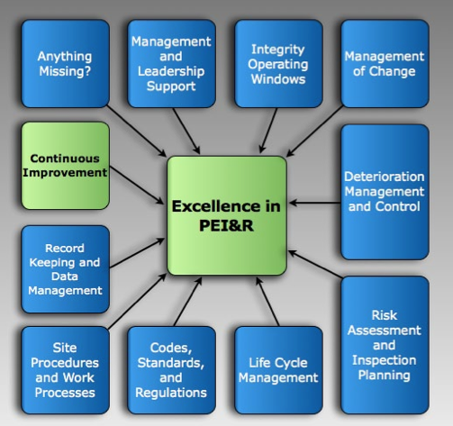 Figure 1: The Ten Management Systems Needed to Achieve Excellence in PEI&R