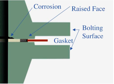 Figure 2: Illustration Showing Flange/Gasket Configuration