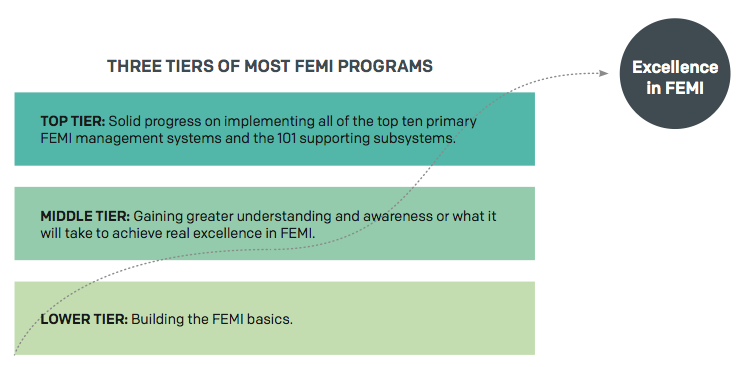Figure 1. The Three Tiers of Most FEMI Programs.